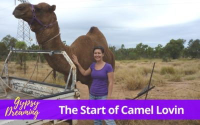 Gypsy Dreaming – Part 3 – Mount Isa Camel Lovin